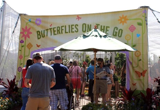 Butterfly Garden Epcot