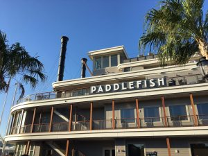 Paddlefish at Disney Springs