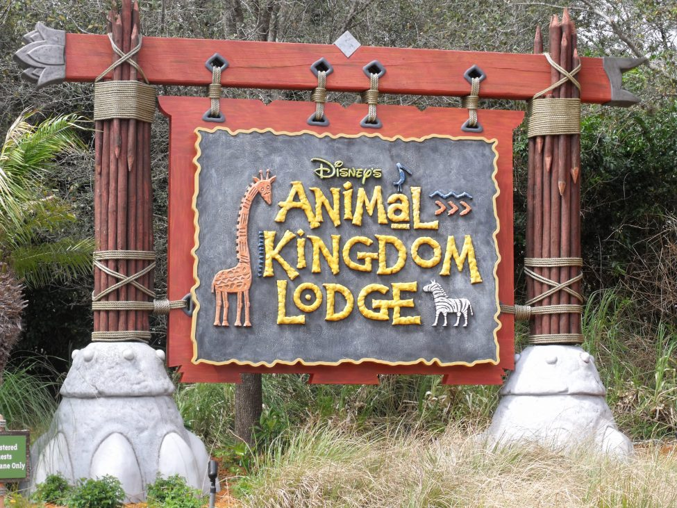 DVC Animal Kingdom Lodge
