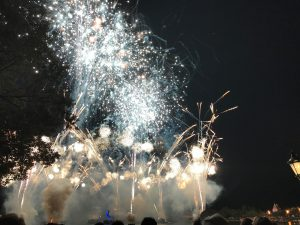 DVC Moonlight Magic Fireworks