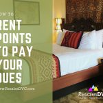 Learn How To Rent Your DVC Points to Pay Your Dues