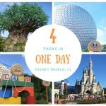 WDW Theme Park Challenge – 4 in 1 Day