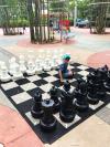 Chess Disney's Bay Lake Tower Orlando Florida Resales DVC