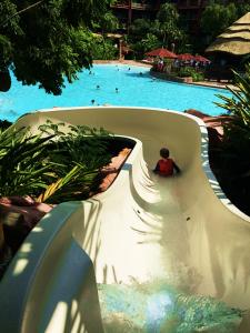 Uzima Springs Pool Slide Animal Kingdom Lodge