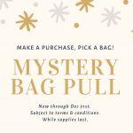 ResalesDVC December Offer: Mystery Bag Pull!